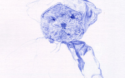 Biro drawing unfinished