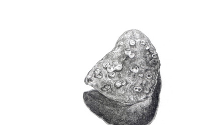 pencil drawing of a pebble from the beach